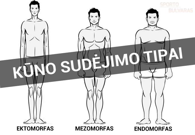 Kūno tipai